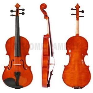 falstaff Violino 4/4 Laminato Finitura Lucida